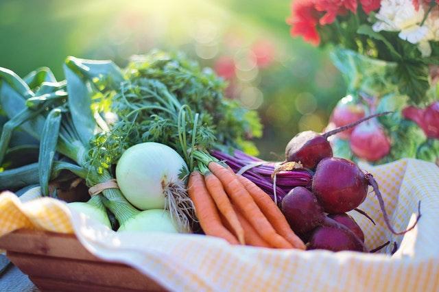 Confira os alimentos da estação, ganhe em qualidade, saúde e economize!