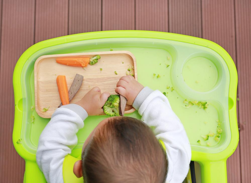 Introdução alimentar com BLW: como funciona?
