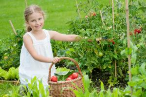 Alimentação orgânica para crianças: quais os benefícios?